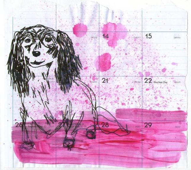 Dog in Pink.