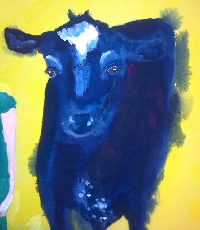dark blue cow