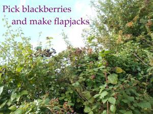 apple and blackberry flapjacks