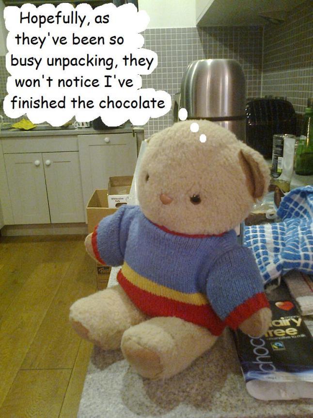Teddy bear with vegan chocolate