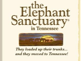 The Elephant Sanctuary, Tennessee