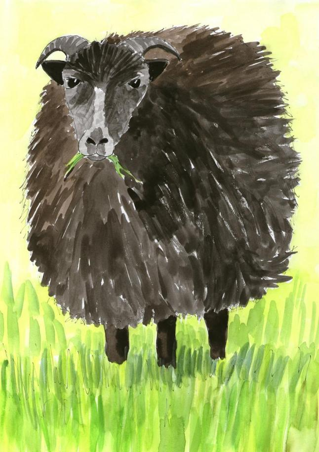 Vegan Baa baa black sheep