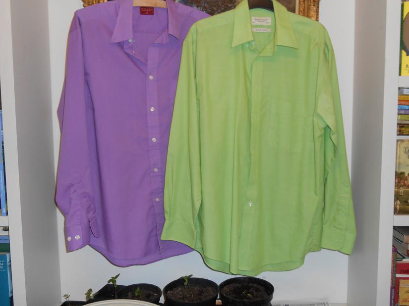 1 old shirts