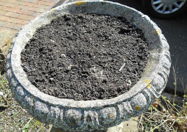 dirt filled pot