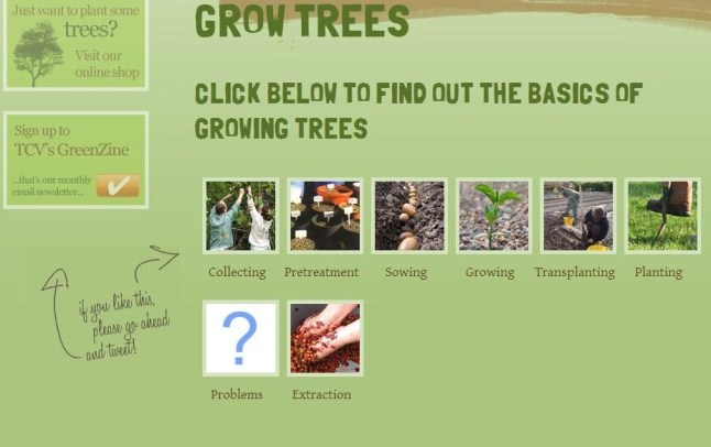 grow your own trees
