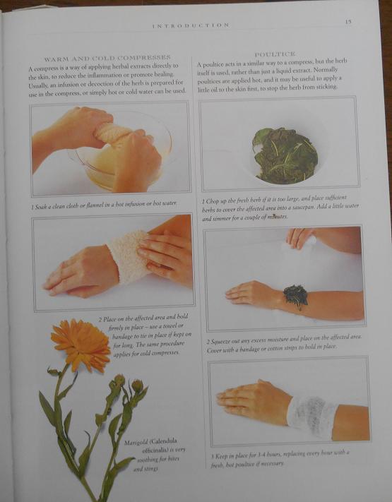 marigold herbal remedy