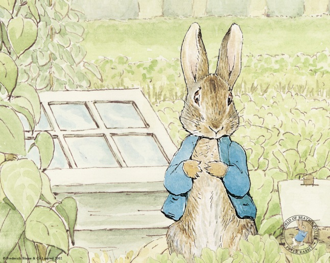 peterrabbit_peter_1280