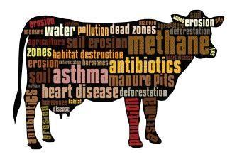 animal farming enviro imp