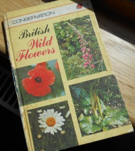 It would help if you had a field guide like this one, which you could probably borrow from  your local library or, if you're lucky, you might be able to get one cheap at a charity shop.