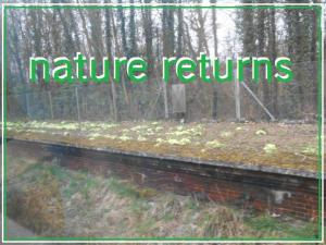 nature returns link
