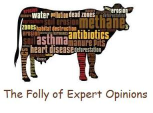 the-folly-of-expert-opinions