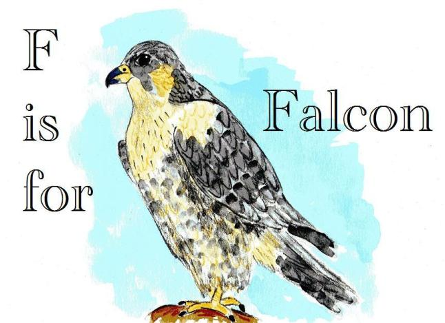 F is for falcon