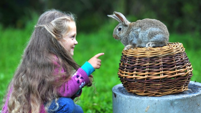 Cute-Rabbit-and-Girl-690x388