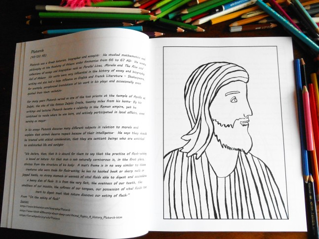 history colouring book