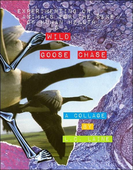 anti-vivisection book