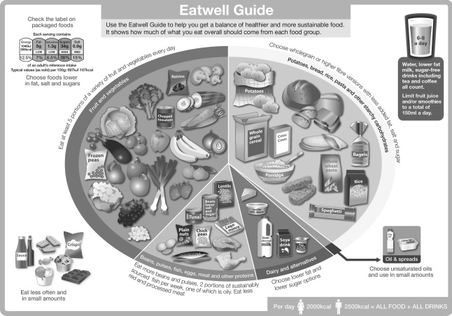 Eatwell_guide_2016_FINAL_MAR-16 grey scale (2)