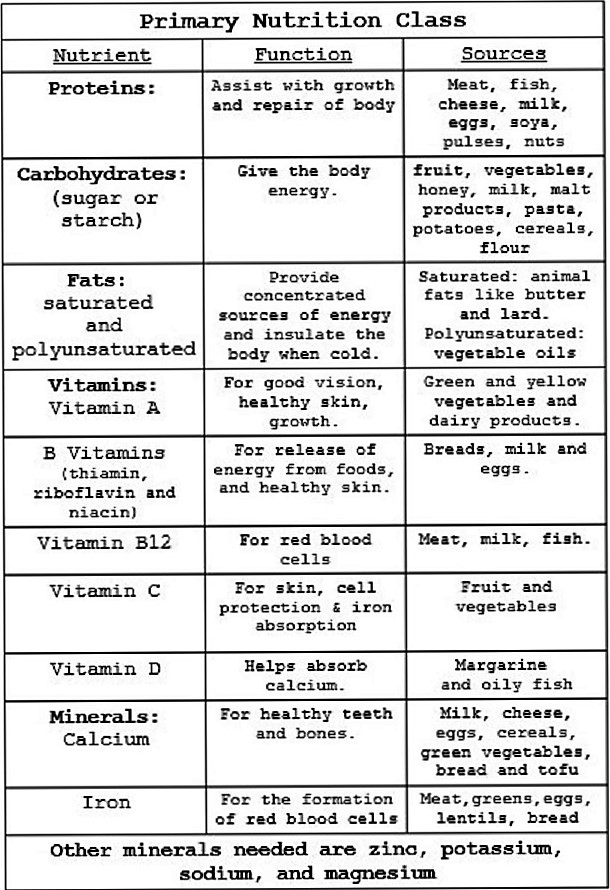 primary nutrition class chart jpeg 150 per cent