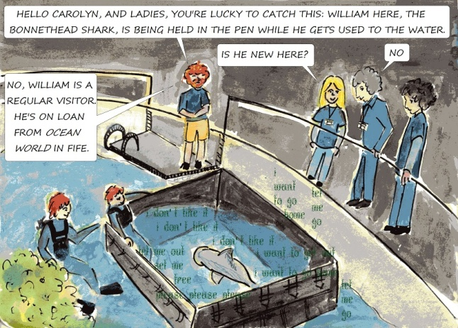 vegan comic at public aquarium