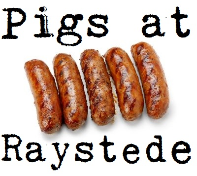 pigs at Raystede